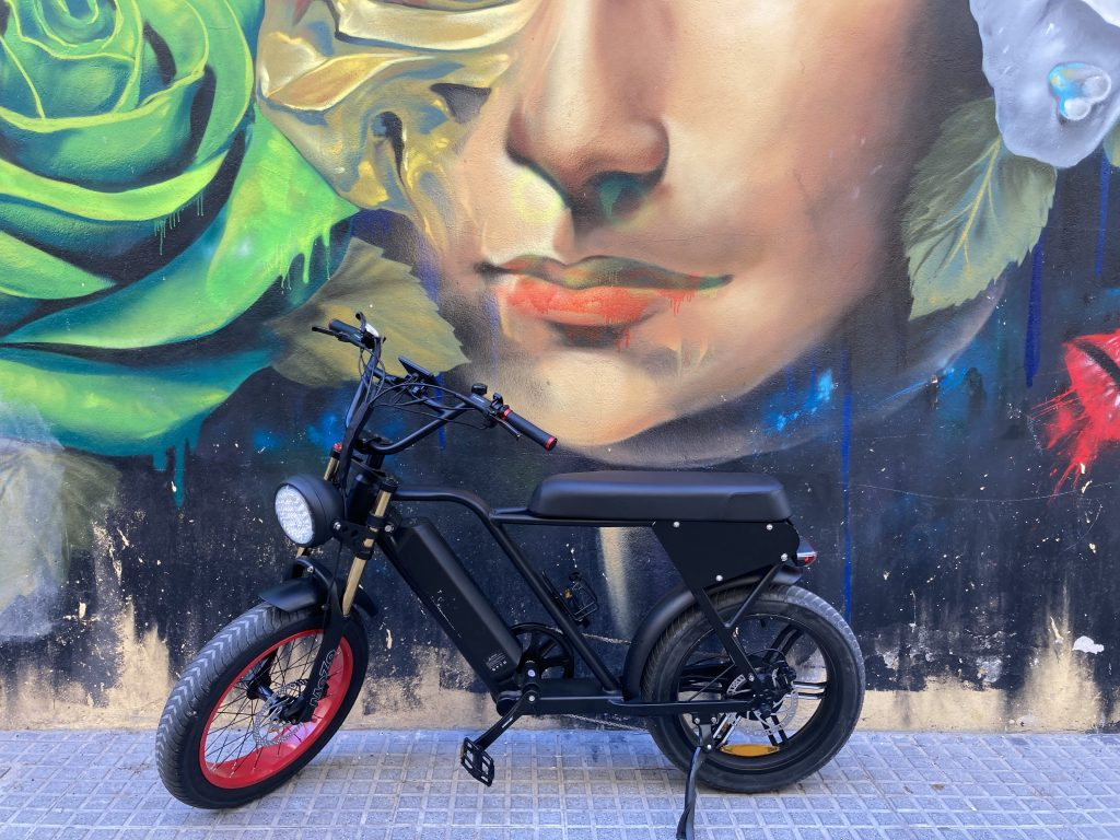 High Carrying Out Low cost Electric Bikes